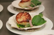 Scallop Brulee, Cress, Olive OIl, Pickled Shallot